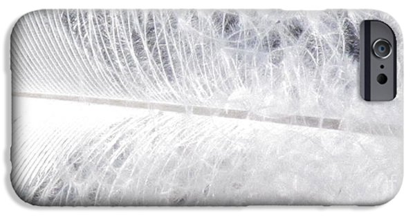 Abstract Digital Photographs iPhone Cases - White feather iPhone Case by France Laliberte