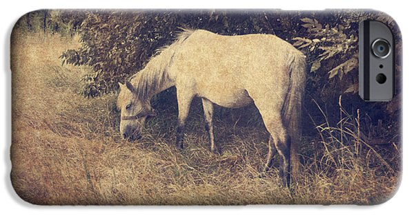 Horse Pyrography iPhone Cases - White Horse iPhone Case by Jelena Jovanovic