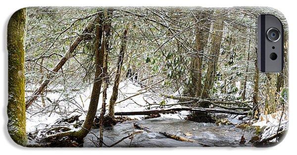 Oak Creek iPhone Cases - White Oak Run in Winter iPhone Case by Thomas R Fletcher
