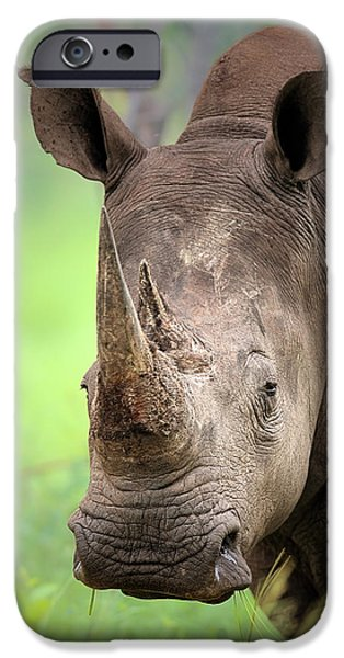 Close iPhone Cases - White Rhinoceros iPhone Case by Johan Swanepoel