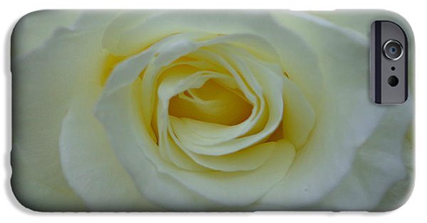 Rose Pyrography iPhone Cases - White Rose iPhone Case by Eva Ason