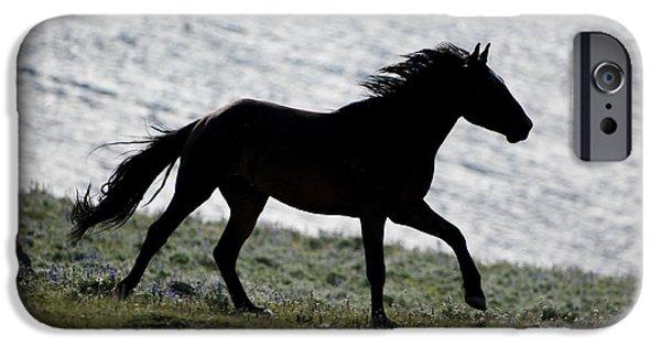 Animals Photographs iPhone Cases - Wild Horses-animals-image-13 iPhone Case by Wildlife Fine Art