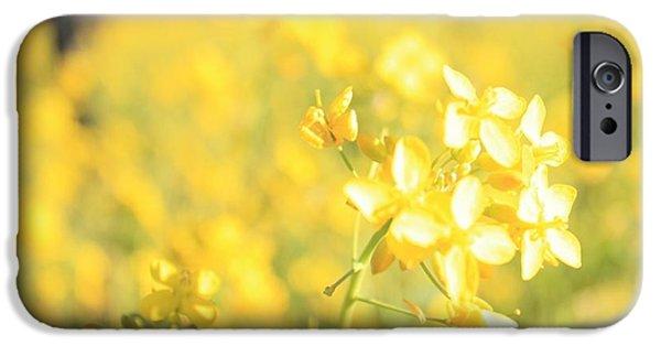 Vineyard In Napa iPhone Cases - Wild Mustard 2 iPhone Case by Penelope Moore