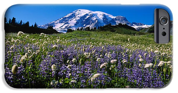 Rainy Day iPhone Cases - Wildflowers On A Landscape, Mt Rainier iPhone Case by Panoramic Images