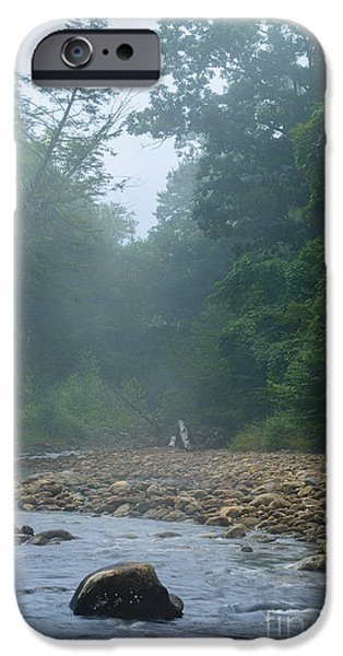 Trout Stream Landscape iPhone Cases - Williams River Summer Mist iPhone Case by Thomas R Fletcher