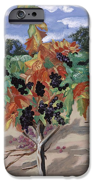 Wine Country iPhone Case by Reba Baptist