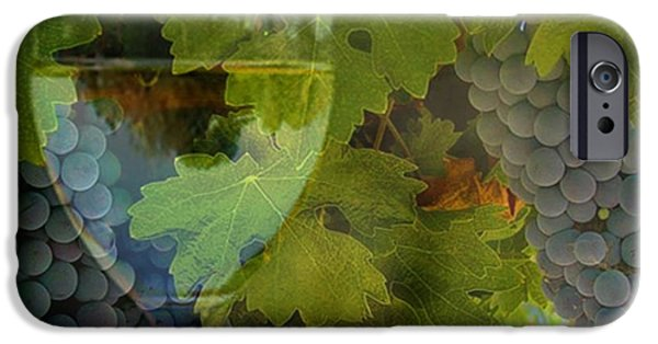 California Vineyard iPhone Cases - Wine iPhone Case by Stephanie Laird