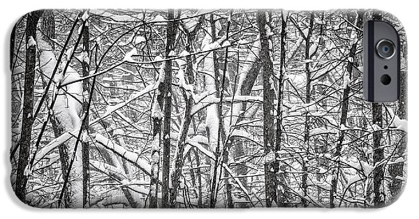 Snowy iPhone Cases - Winter forest abstract iPhone Case by Elena Elisseeva