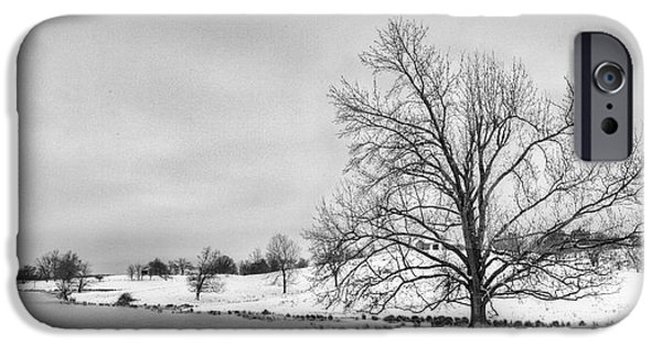 Daviess County Photographs iPhone Cases - Winter in Kentucky iPhone Case by Wendell Thompson