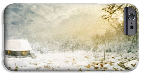 Winter Scene Pyrography iPhone Cases - Winter iPhone Case by Jelena Jovanovic