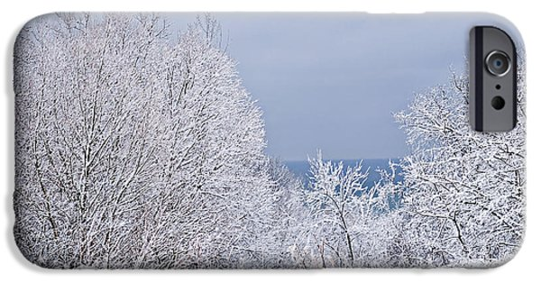 Snowy iPhone Cases - Winter landscape iPhone Case by Elena Elisseeva