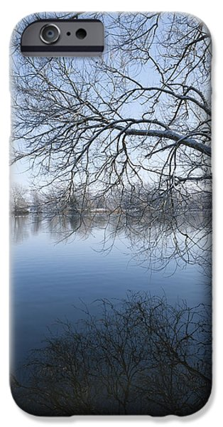 Snowy Stream iPhone Cases - Winter Tree iPhone Case by Svetlana Sewell