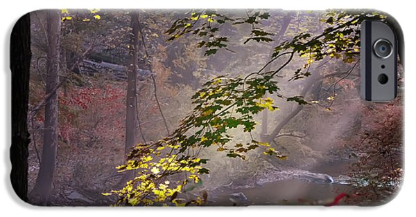 Leaf Change iPhone Cases - Wissahickon Autumn iPhone Case by Bill Cannon