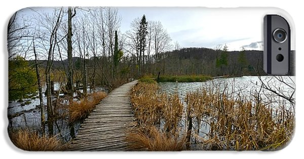 Pathway Pyrography iPhone Cases - Wooden path trough the lakes iPhone Case by Oliver Sved