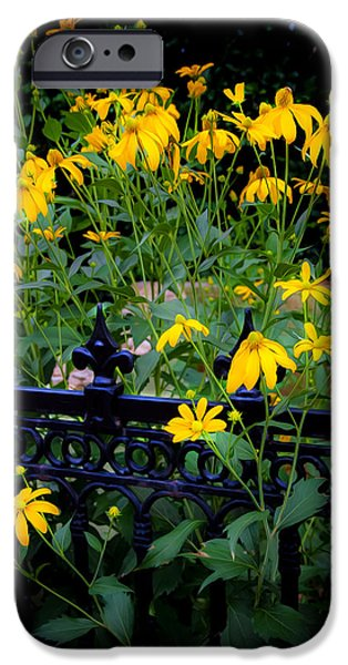 Abstracted Coneflowers iPhone Cases - Yellow Coneflowers Echinacea Wrought Iron Gate  iPhone Case by Rich Franco