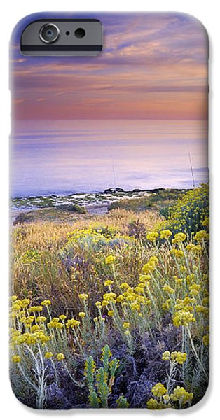 Yellow flowers at the sea iPhone Case by Guido Montanes Castillo