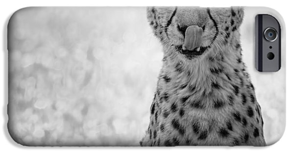 Cheetah Digital Art iPhone Cases - You Look Tasty iPhone Case by Phill  Doherty