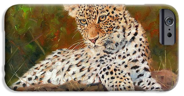 Young Paintings iPhone Cases - Young Leopard iPhone Case by David Stribbling