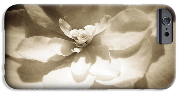 Sepia Flowers iPhone Cases - Flower iPhone Case by Les Cunliffe