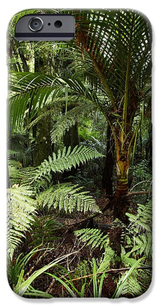 Fauna iPhone Cases - Jungle iPhone Case by Les Cunliffe