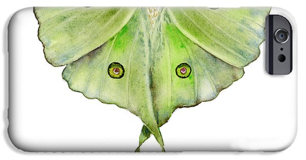 Moth iPhone Cases - 100 Luna Moth iPhone Case by Amy Kirkpatrick