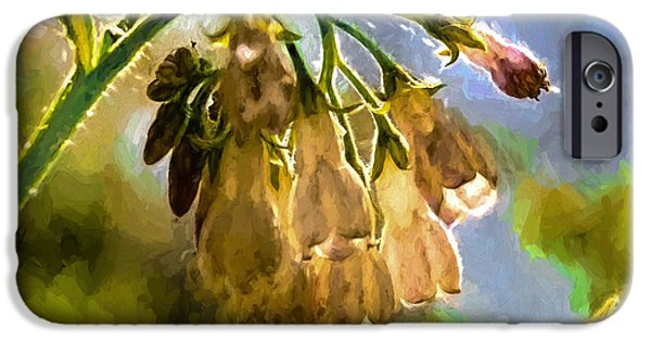 Paiting iPhone Cases - 11 Artistic painterly Wild flower lightened by sun iPhone Case by Leif Sohlman
