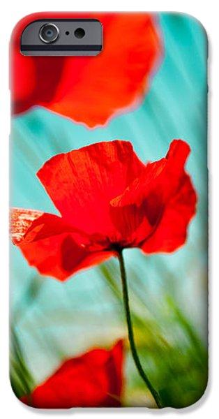 Poppy field and sky iPhone Case by Raimond Klavins