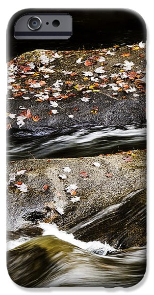 Williams River Autumn iPhone Case by Thomas R Fletcher