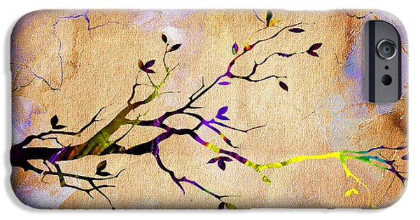 Branches iPhone Cases - Tree Branch Collection iPhone Case by Marvin Blaine