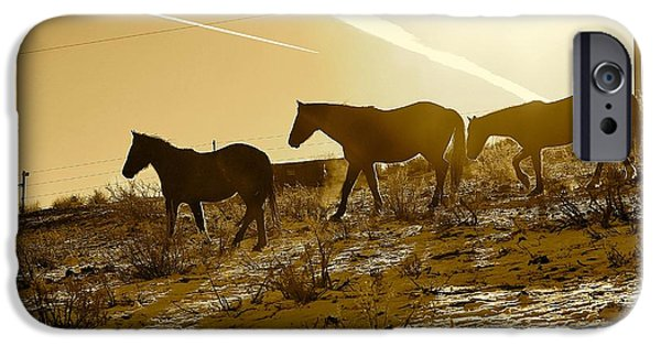 Advocacy iPhone Cases - 14. Lockwood Mustangs iPhone Case by Maria Jansson