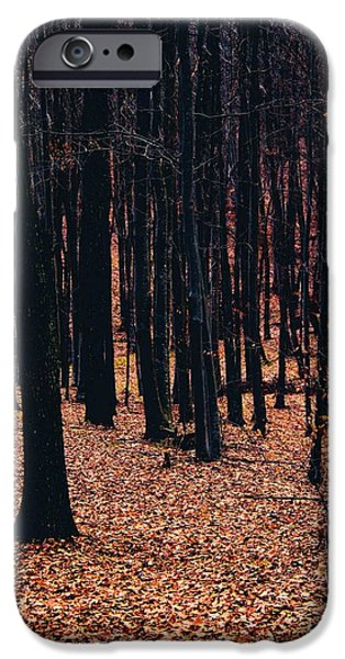 Surreal Landscape Pyrography iPhone Cases - Savas Artwork iPhone Case by Popa Bogdan