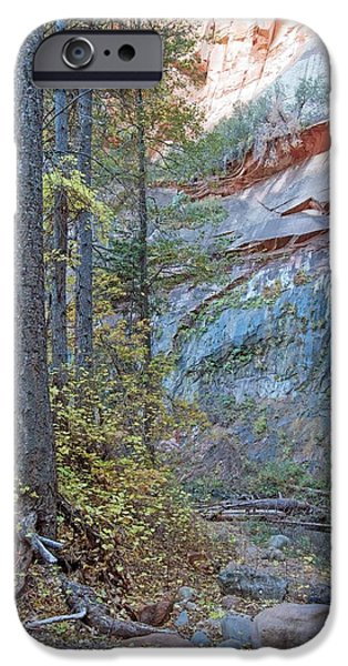 West Fork iPhone Cases - West Fork Oak Creek iPhone Case by Tam Ryan