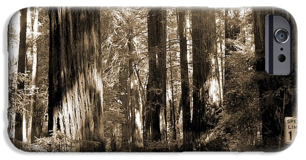 Forest iPhone Cases - 15 Mph iPhone Case by Mike McGlothlen