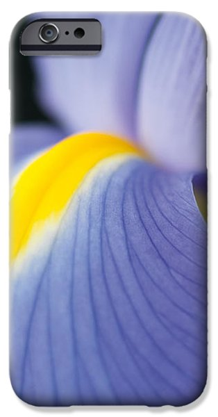 Untitled iPhone Case by Anne Geddes