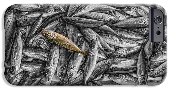Industry iPhone Cases - Tile of fishes iPhone Case by Dobromir Dobrinov