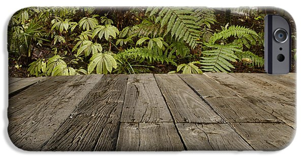 Pathway iPhone Cases - Jungle stream iPhone Case by Les Cunliffe