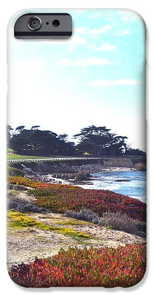 17 Mile Drive Shore Line II iPhone Case by Barbara Snyder