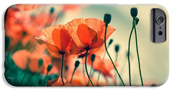 Meadow Photographs iPhone Cases - Poppy Meadow iPhone Case by Nailia Schwarz