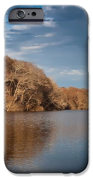 Apalachicola River  iPhone Case by Debra Forand