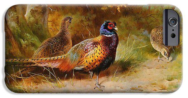 Pheasant iPhone Cases - Autumn Covert Pheasants iPhone Case by Archibald Thorburn