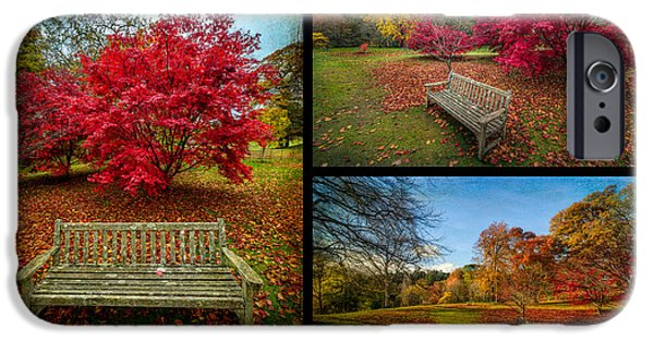 Fall Bushes iPhone Cases - Autumn in the Park iPhone Case by Adrian Evans