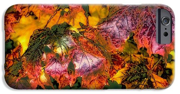 Surreal Landscape iPhone Cases - Autumn Leaves iPhone Case by David Patterson