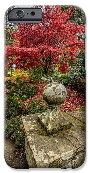 North Wales Digital Art iPhone Cases - Autumn Path iPhone Case by Adrian Evans