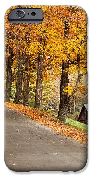 Autumn Road iPhone Case by Brian Jannsen