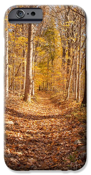 Natchez Trace Parkway iPhone Cases - Autumn Trail iPhone Case by Brian Jannsen