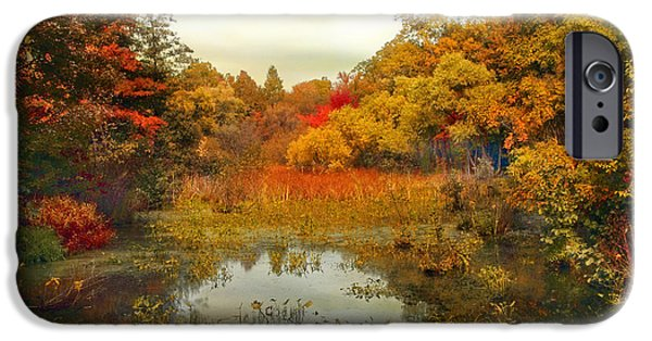 Wetlands iPhone Cases - Autumn Wetlands iPhone Case by Jessica Jenney