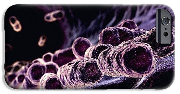 Bacillus iPhone Cases - Bacteria, Computer Artwork iPhone Case by Animate4.com Ltd.
