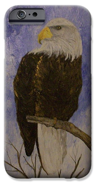 Birds Reliefs iPhone Cases - Bald Eagle iPhone Case by Roy Penny