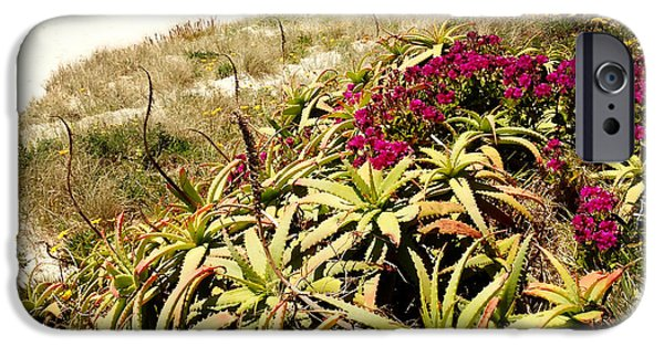 Paradise. Flower Photographs iPhone Cases - Beach iPhone Case by Les Cunliffe