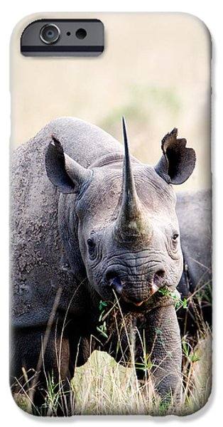 Masai Mara Photographs iPhone Cases - Black Rhinoceros Diceros Bicornis iPhone Case by Panoramic Images